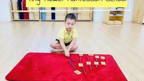 Bài tập giúp con biết liên kết giữa số và lượng.