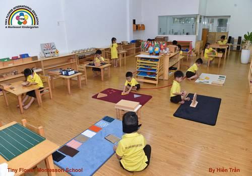 Bản tin Montessori